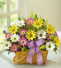 Springtime Wishes™