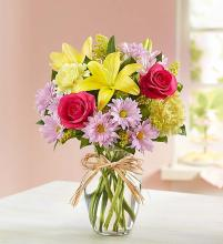 Fields of Europe™ for Spring