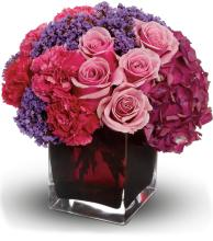 Enchanted Journey