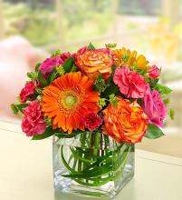 Sunset Passion™